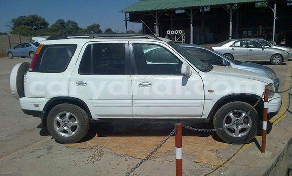 Buy Honda Accord White Car in Kitwe in Zambia