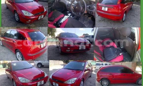 Buy Ford Focus Black Car in Chipata in Zambia