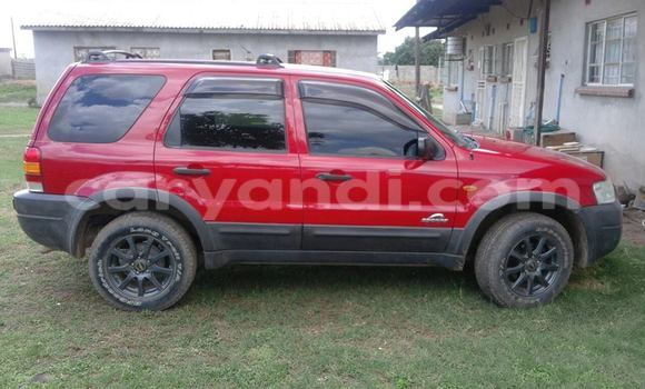 Buy Ford Escape Red Car in Chipata in Zambia
