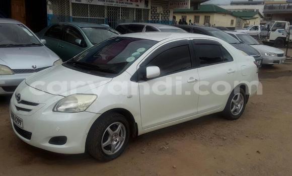 Buy Toyota bB White Car in Chipata in Zambia