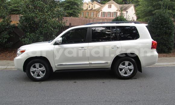 Buy Toyota Land Cruiser White Car in Livingstone in Zambia