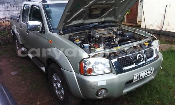 Buy Nissan Hardbody Silver Car in Chipata in Zambia