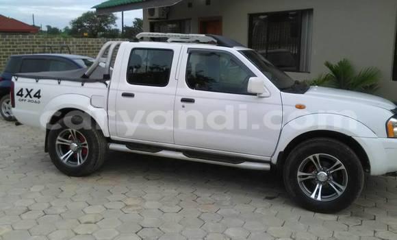 Buy Nissan Hardbody White Car in Chipata in Zambia