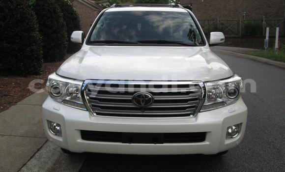 Buy Toyota Land Cruiser White Car in Chipata in Zambia
