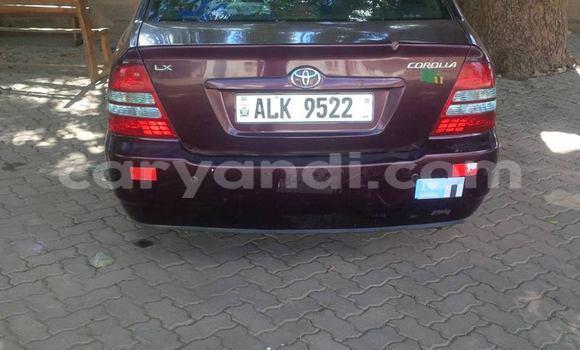 Buy Toyota Corolla Other Car in Chingola in Lusaka Lusaka Zambia