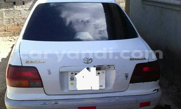 Buy Toyota Corolla White Car in Chipata in Zambia