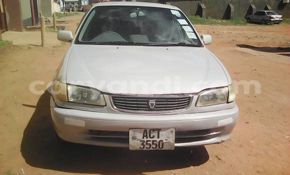 Buy Toyota Corolla Silver Car in Chipata in Zambia