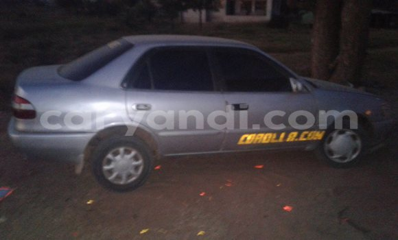 Buy Toyota Corolla Silver Car in Lusaka in Zambia