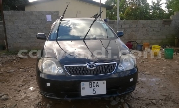 Buy Toyota Corolla Black Car in Ndola in Zambia