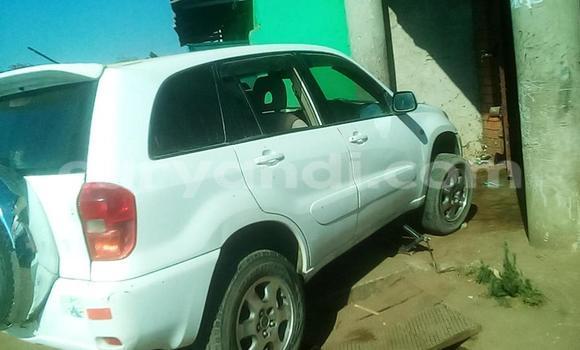 Buy Toyota RAV4 White Car in Lusaka in Zambia
